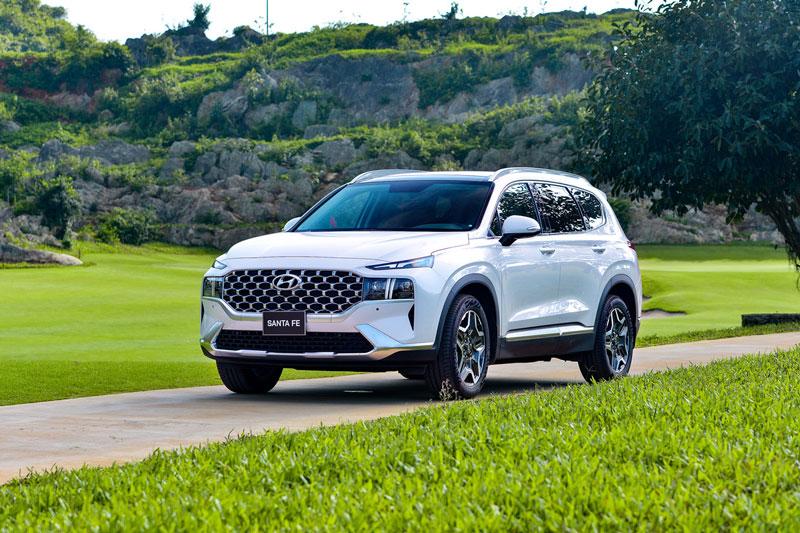 5. Hyundai Santa Fe (doanh số: 1.313 chiếc). Ảnh: TC Motor.