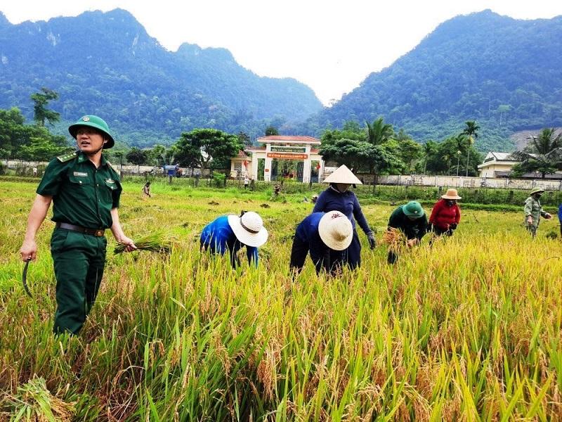 Cánh đồng lúa nước Rục Làn- một trong những chương trình thành công của Biên Phòng giúp đồng bào Rục- Quảng Bình biết trồng lúa nước.