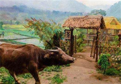 Con bò của một nông dân già bị cắt lưỡi, Bao Công ra lệnh: Giết con bò sẽ tìm ra thủ phạm - Tại sao? - Ảnh 1.