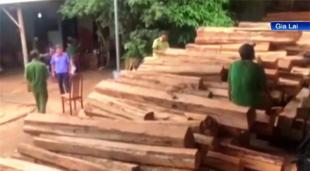 Truy tố 7 đối tượng mua bán gần 1.400m3 gỗ lậu - Ảnh 1.