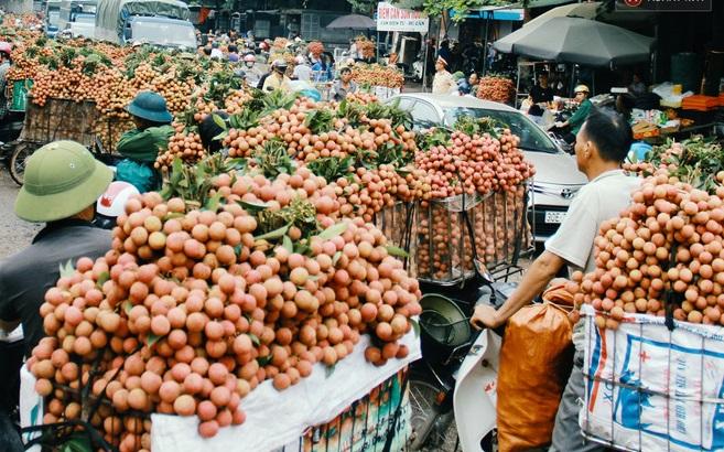 Bắc Giang đã tiêu thụ hết vụ vải thiều khi mà dịch đang bùng phát mạnh tại tỉnh. Ảnh: Internet