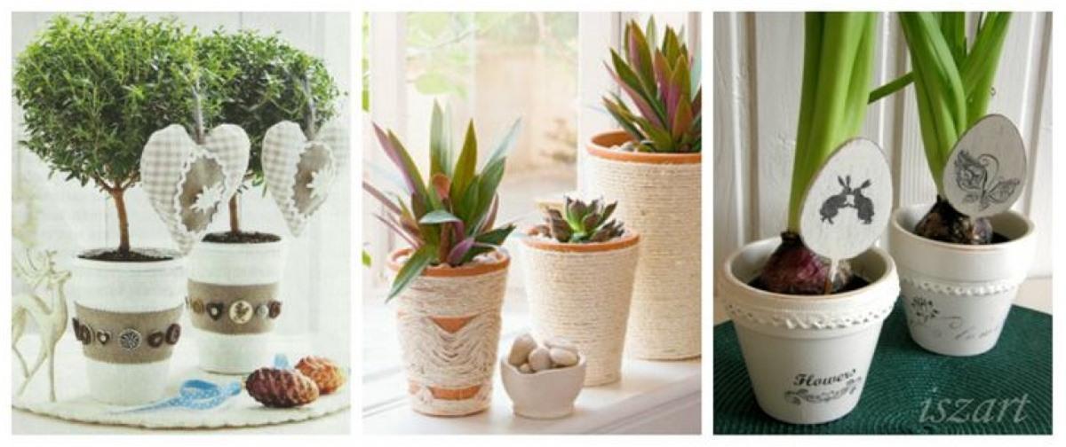 Có rất nhiều cách để biến những chậu hoa thành tâm điểm chú ý trong căn phòng của bạn.