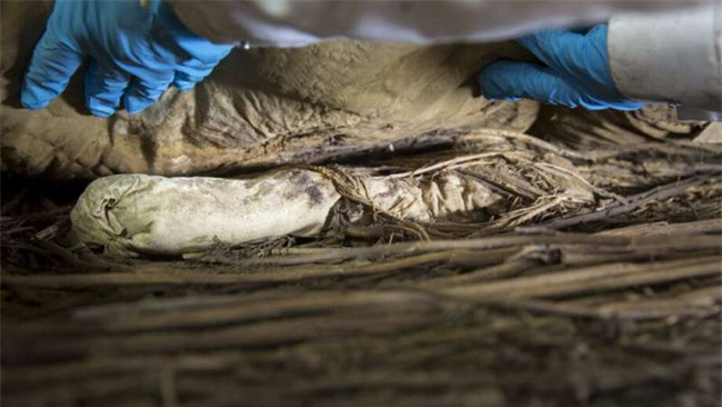 """Chụp X-quang quan tài chứa xác ướp 300 tuổi của người đàn ông, các nhà khoa học phát hiện """"bọc lạ"""" dưới chân rồi sốc khi biết đó là thai nhi - Ảnh 2."""