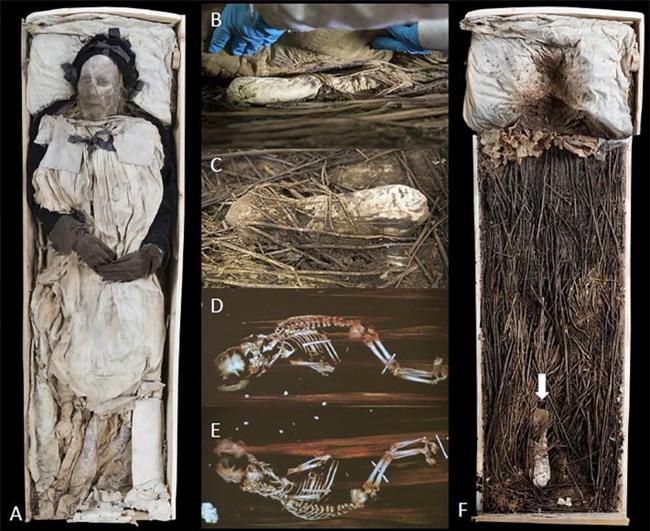"""Chụp X-quang quan tài chứa xác ướp 300 tuổi của người đàn ông, các nhà khoa học phát hiện """"bọc lạ"""" dưới chân rồi sốc khi biết đó là thai nhi - Ảnh 4."""