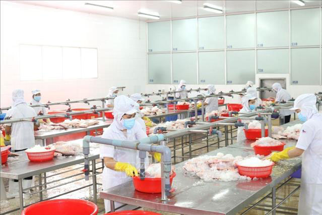 TP Hồ Chí Minh ưu tiên chống dịch, nhưng không quên doanh nghiệp