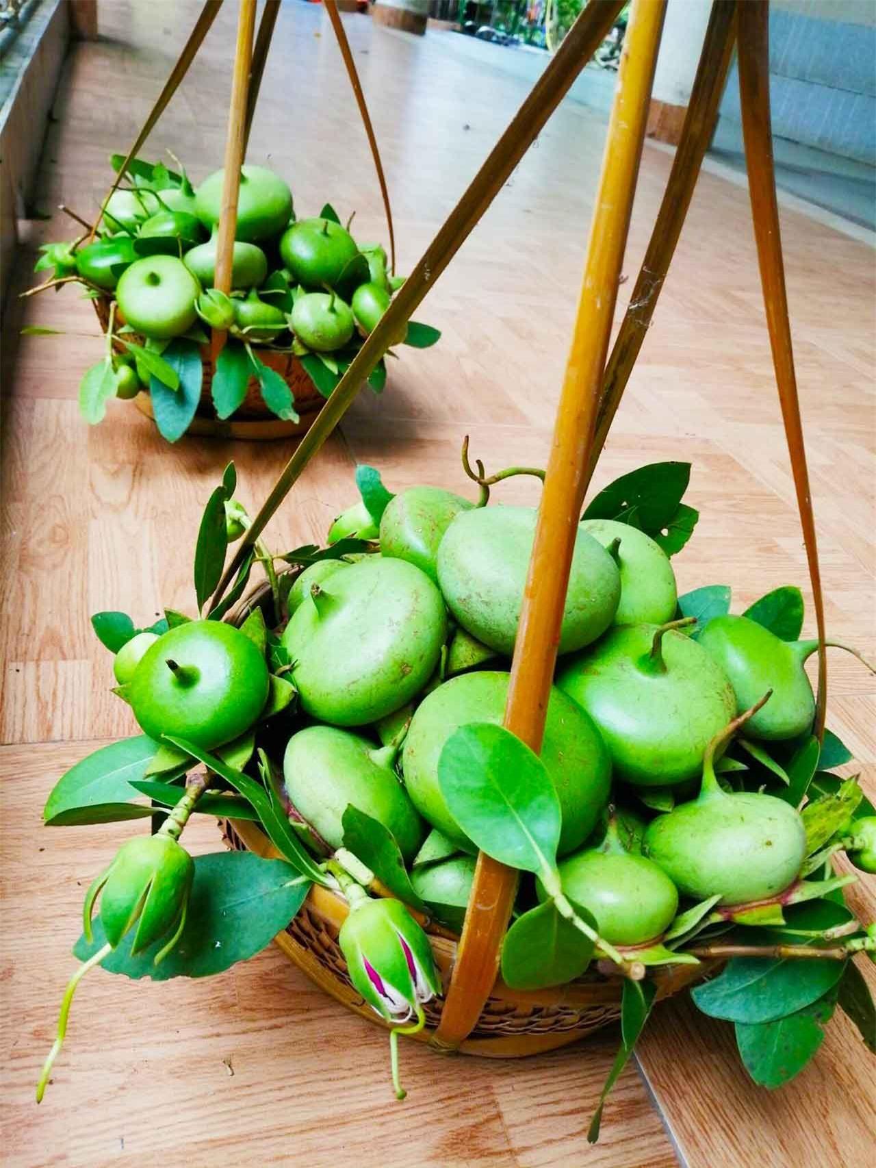 Loài cây mọc hoang, được người miền Tây chế biến món ăn dân dã, xuất khẩu sang nước ngoài bán trong siêu thị - Ảnh 3.