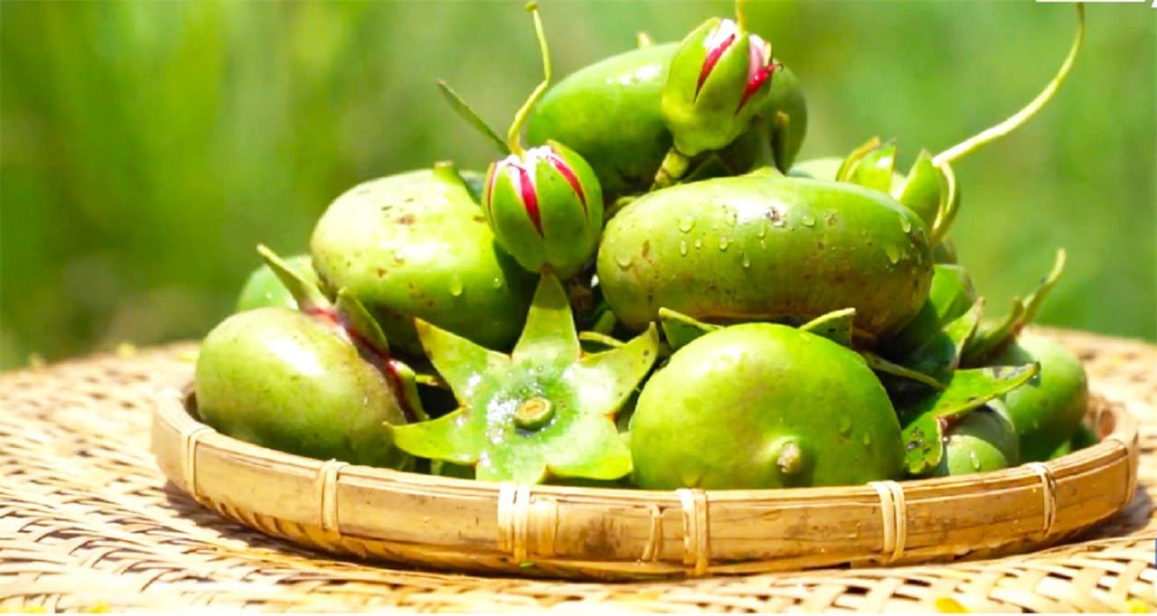 Loài cây mọc hoang, được người miền Tây chế biến món ăn dân dã, xuất khẩu sang nước ngoài bán trong siêu thị - Ảnh 7.