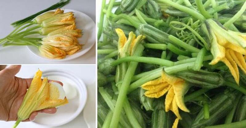 """Hoa bí - Thực phẩm """"vàng"""" cho sức khỏe"""