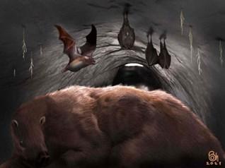 """Tìm thấy hóa thạch 100.000 năm tuổi của loài dơi """"ma cà rồng"""" ở Argentina"""