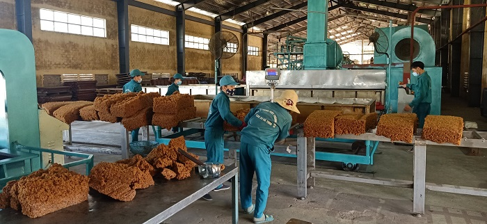 Tập đoàn Công nghiệp cao su Việt Nam lãi lớn trong nửa đầu năm 2021