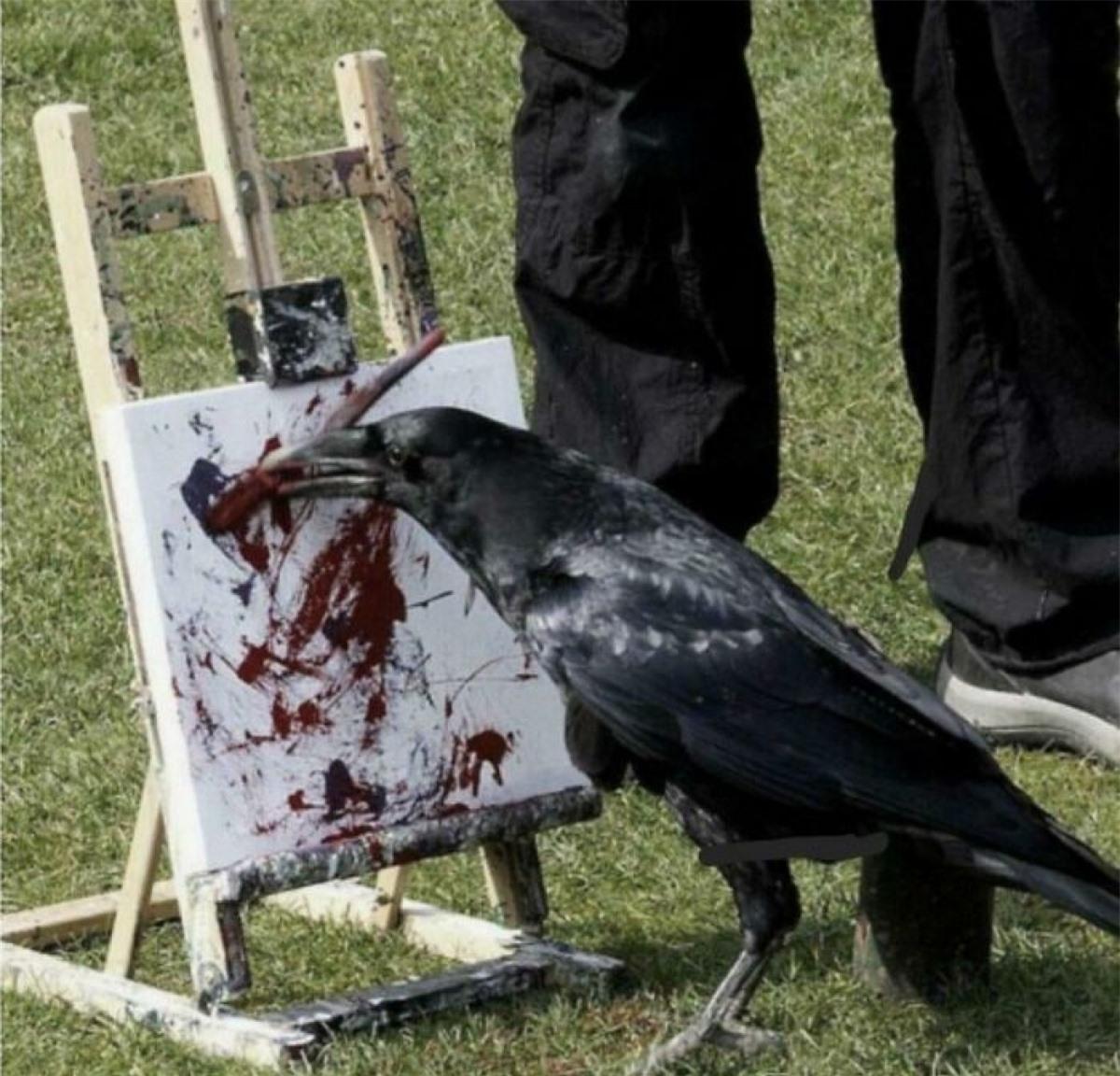 Chú quạ có niềm đam mê hội họa./.