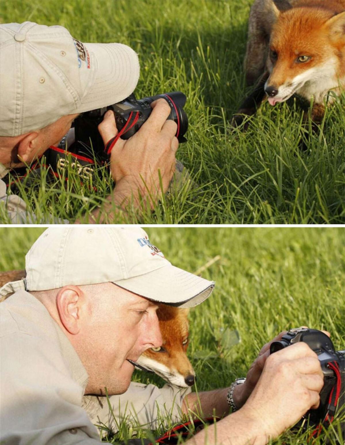 Hãy để tôi xem ông bạn chụp có đẹp không nào!