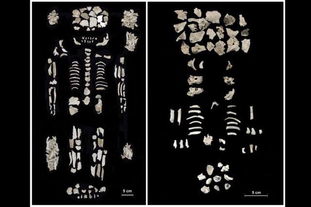 Bí ẩn hài cốt hơn 3.500 năm tuổi của người phụ nữ mang thai