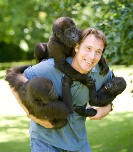 Nuôi 1 con khỉ đột rồi thả về tự nhiên, 5 năm sau người đàn ông bất chấp đi tìm lại và cái kết ngoài tưởng tượng - Ảnh 1.
