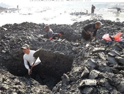 Chàng trai đào huyệt tìm thấy chiếc bình lá sen: Khi đội khảo cổ đến nơi, họ đã xới tung cả khu đất! - Ảnh 1.