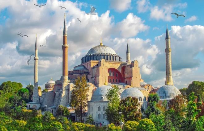 """Istanbul được biết đến với biệt danh """"thành phố mèo"""". Theo World Atlas, Istanbul chính là thành phố lớn nhất châu Âu. Với mật độ dân cư cao và diện tích rộng lớn, thành phố này thường bị nhầm là thủ đô của Thổ Nhĩ Kỳ. Thực tế, thủ đô của đất nước này là thành phố Ankara. Ảnh: Unsplash."""