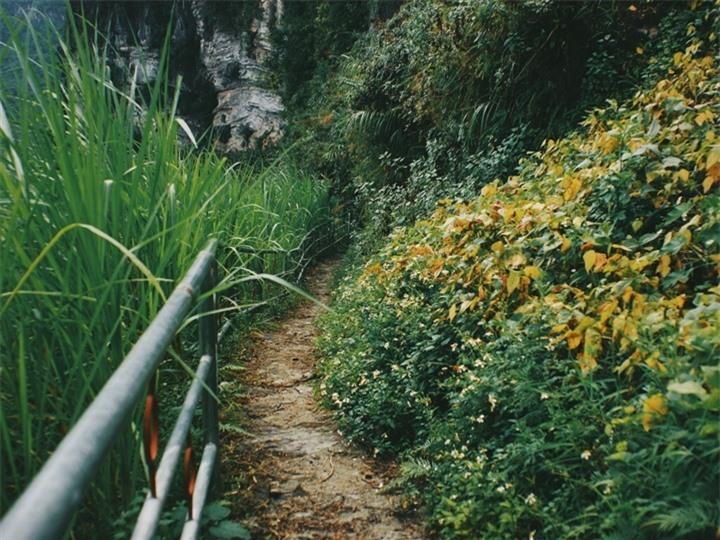 Đường chinh phục 'Vách đá thần' trên đỉnh núi Cô Tiên hớp hồn dân du lịch - 5