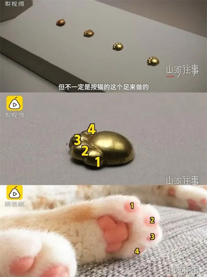 Khai quật lăng mộ, đội khảo cổ đào được 5 chiếc măng cụt mèo bằng vàng ròng 2700 tuổi siêu đáng yêu - Ảnh 3.