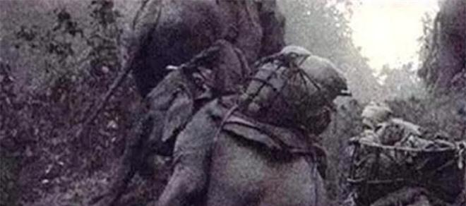 Thành Cát Tư Hãn áp dụng 1 cách giúp binh lính không bị đói, quân Nhật Bản trong Thế chiến II học theo, 5 vạn quân lăn ra chết - Ảnh 4.
