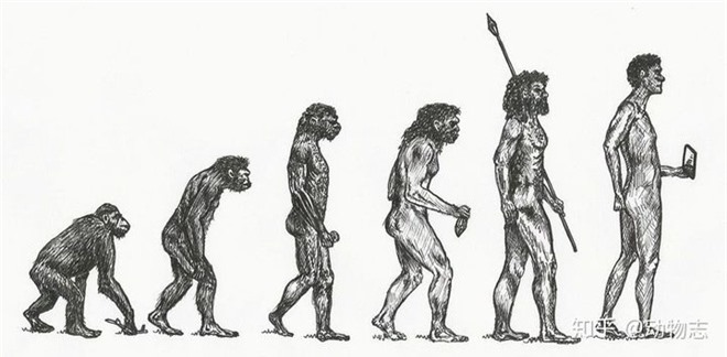 Tại sao các loài động vật khác có nhiều chi, họ, nhưng con người hiện đại lại chỉ có một? - Ảnh 3.