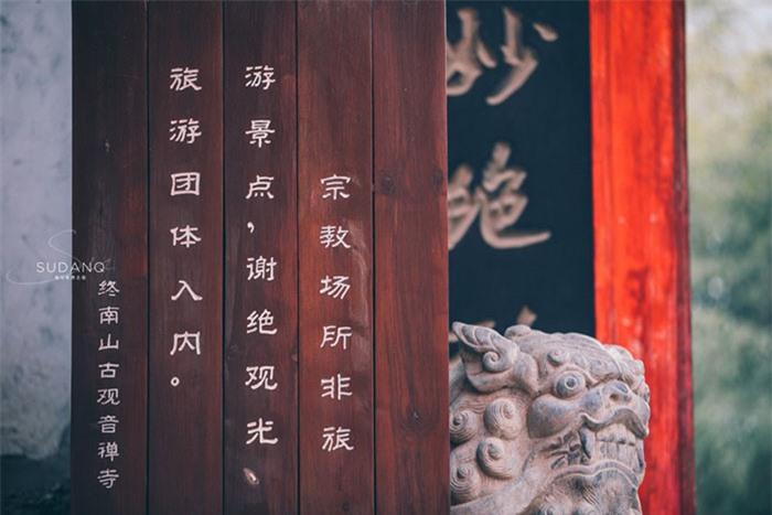 Ngôi chùa hàng nghìn năm tuổi bỗng dưng nổi tiếng chỉ vì loài cây này 2