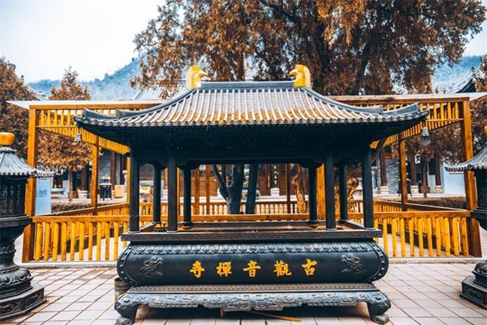 Ngôi chùa hàng nghìn năm tuổi bỗng dưng nổi tiếng chỉ vì loài cây này 7