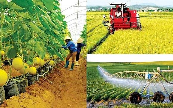Ngành nông nghiệp phải đối mặt với một loạt khó khăn trong những tháng cuối năm 2021.
