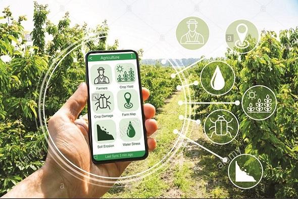 Kỳ vọng áp dụng chuyển đổi số nông nghiệp để biến Việt Nam thành kho nông sản của thế giới.
