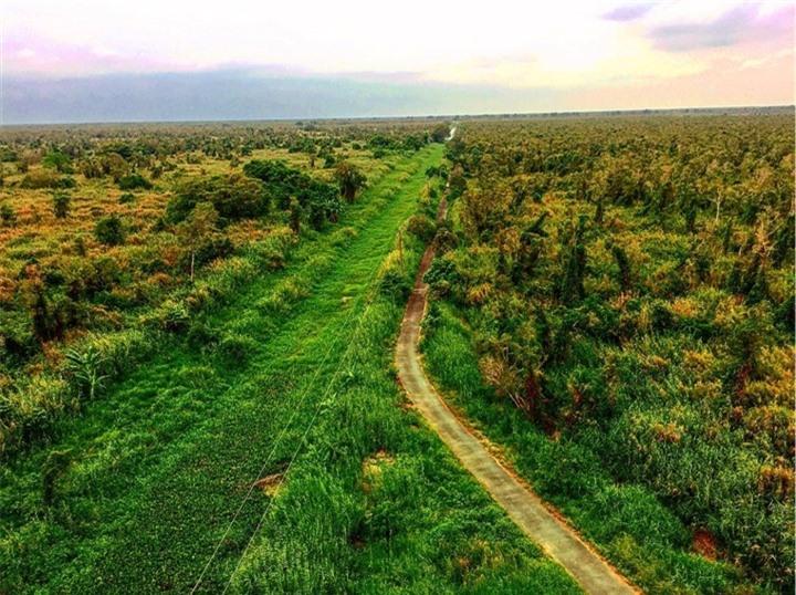Khám phá khu rừng ở Việt Nam được xếp loại quý hiếm trên thế giới - 1