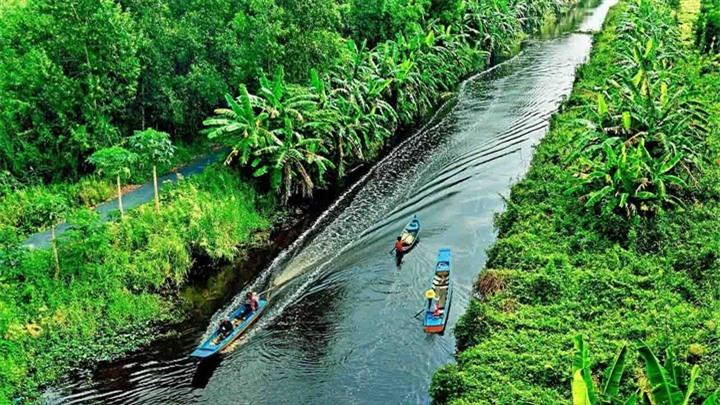 Khám phá khu rừng ở Việt Nam được xếp loại quý hiếm trên thế giới - 2
