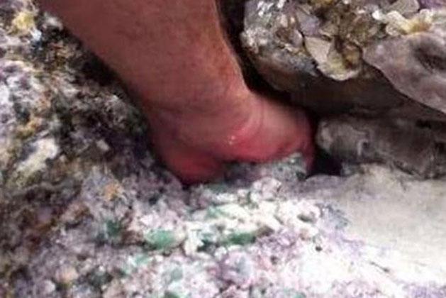 Bất chấp lời can ngăn, ông lão liều mạng thò tay vào hốc đá rồi 'bắt được' vật quý sánh ngang kim cương!