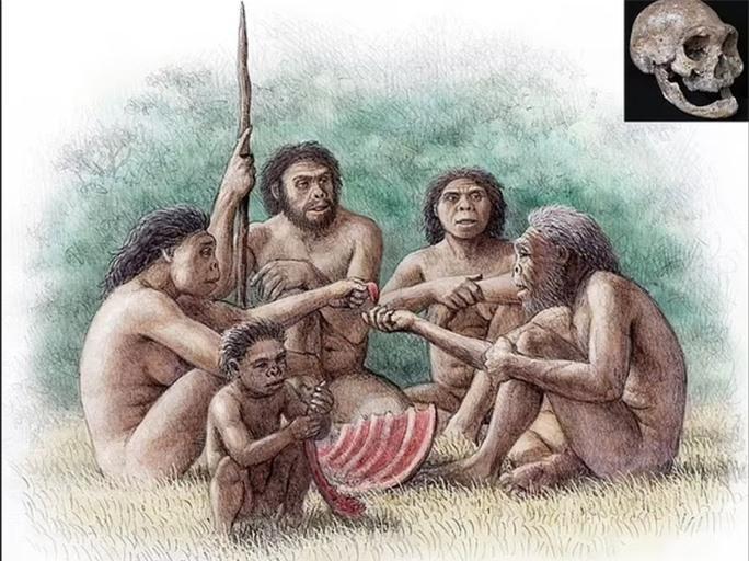 Mộ phần người khác loài và quái thú 1,8 triệu tuổi: lịch sử thay đổi? - Ảnh 2.