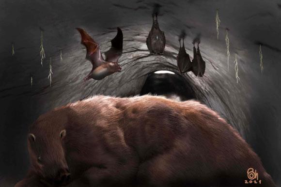 """Phát hiện """"ma cà rồng"""" 100.000 tuổi, hóa đá trong hang quái thú"""
