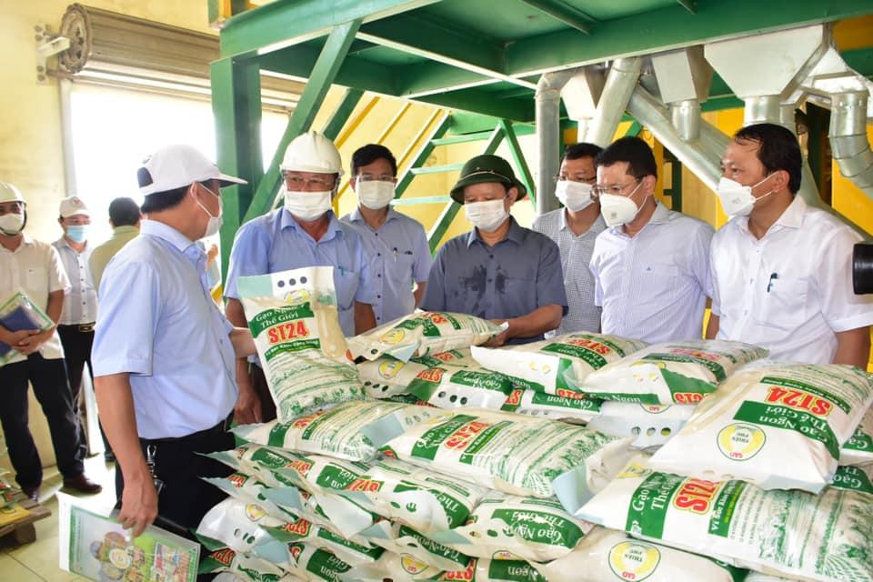 Thăm nhà máy xay xát lúa gạo Green 6 của Công ty Cổ phần Vật tư nông nghiệp Thừa Thiên Huế.