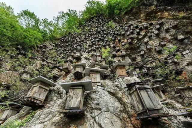 Bí ẩn hàng trăm hộp gỗ kỳ lạ trên vách đá