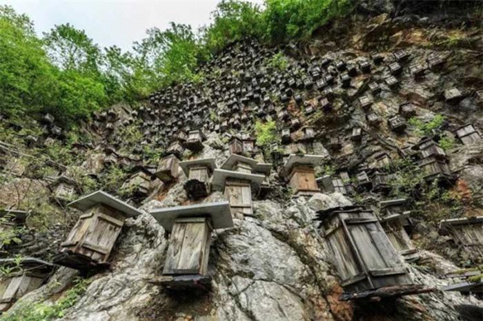 Bí ẩn hàng trăm hộp gỗ kỳ lạ trên vách đá 1