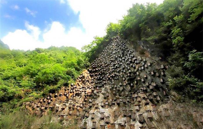 Bí ẩn hàng trăm hộp gỗ kỳ lạ trên vách đá 2