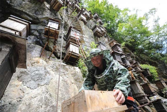 Bí ẩn hàng trăm hộp gỗ kỳ lạ trên vách đá 3