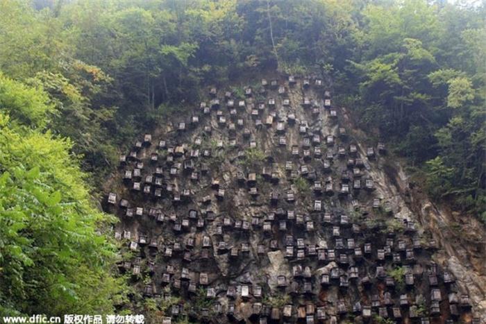 Bí ẩn hàng trăm hộp gỗ kỳ lạ trên vách đá 4