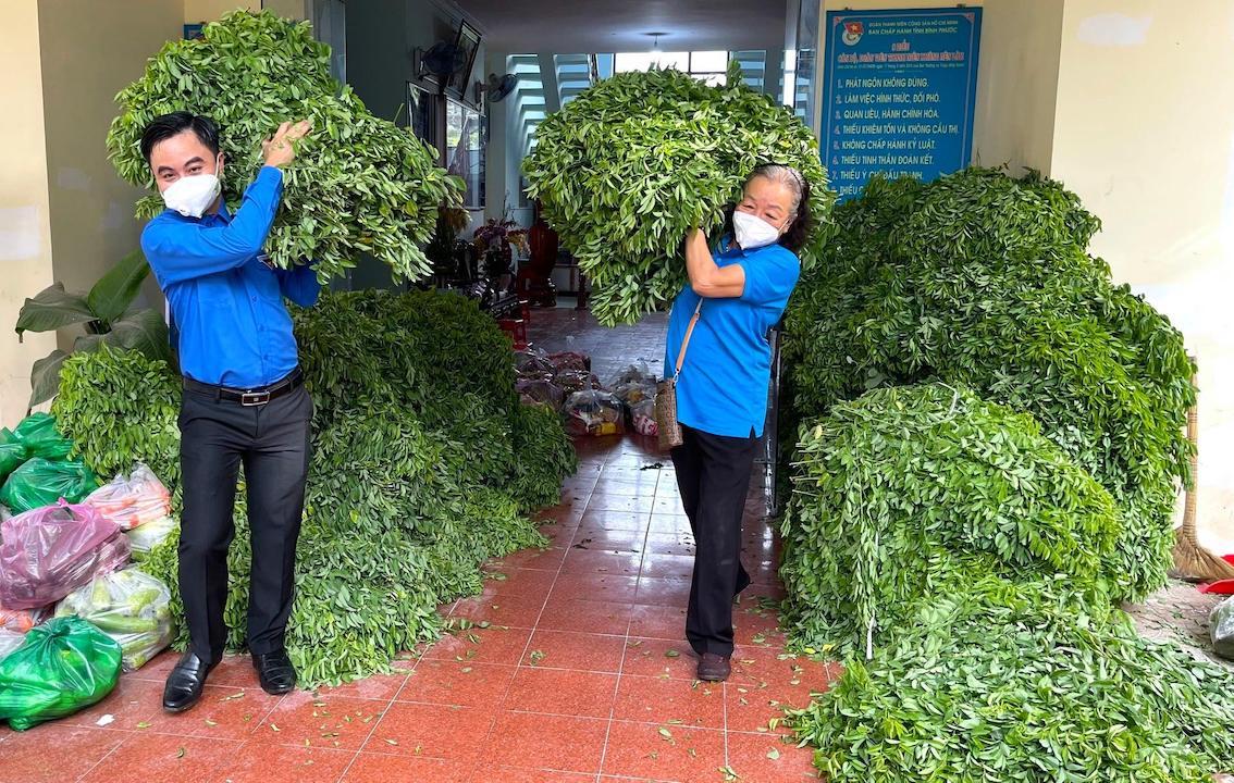Chủ tịch Hội NKT-TMC&BNN tỉnh Dương Thị Tuyết (phải) cùng Bí thư Tỉnh Đoàn Trần Quốc Duy chuyển những bó rau ngót xanh non lên xe để gửi đến TP Hồ Chí Minh