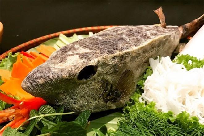 Loạt đặc sản cá ngon khi tới Quy Nhơn, Phú Yên - Hình 8