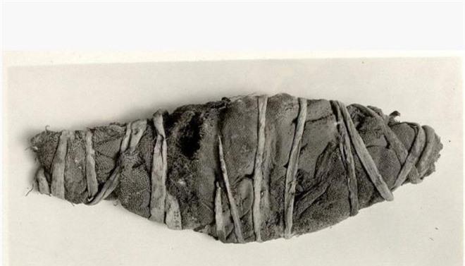 Xác ướp dài 28cm nằm im trong viện bảo tàng, kết quả chụp CT khiến các chuyên gia thích thú: Bây giờ mới rõ bên trong! - Ảnh 1.