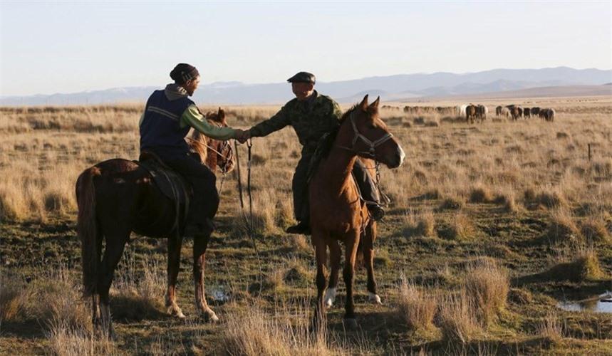 Những người chăn bò cưỡi ngựa gặp nhau trên thảo nguyên.