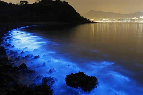 5 bãi biển có khả năng phát sáng như dải ngân hà vào buổi tối, ngay gần Việt Nam mà ít người biết