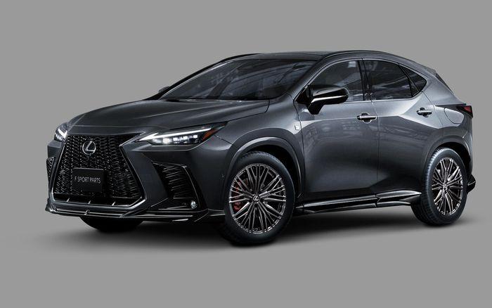 Lexus NX 2022 được nâng cấp với gói trang bị thể thao TRD