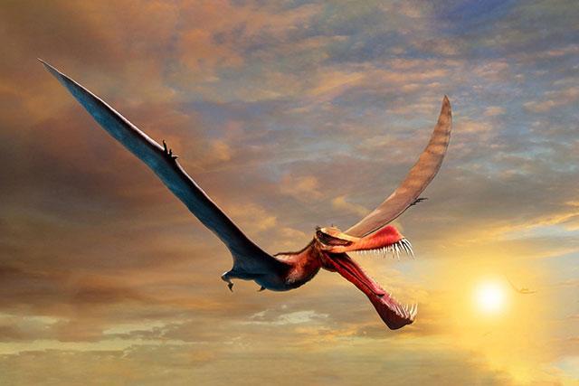 Australia phát hiện hóa thạch của loài thằn lằn bay lớn nhất, sải cánh ước tính rộng tới 7m