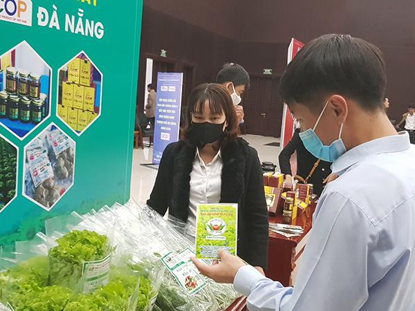 Đà Nẵng: Tổ chức tuần lễ kích cầu phục hồi mua sắm với mức ưu đãi giảm giá 50%-100%