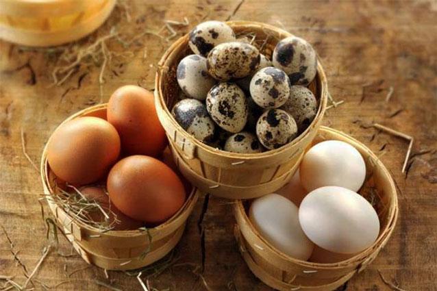 Trứng gà, trứng vịt, trứng cút - loại nào tốt nhất, giúp con thông minh vượt trội?