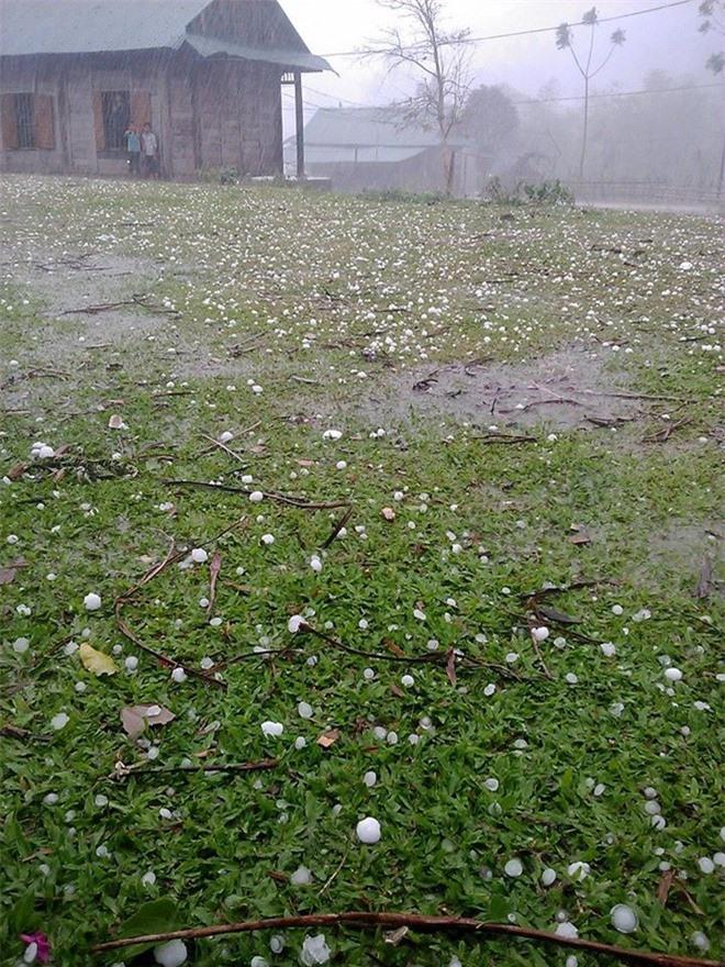 Mưa đá xảy ra trên một số địa bàn miền Tây tỉnh Nghệ An chiều 9/4. Ảnh: Zings