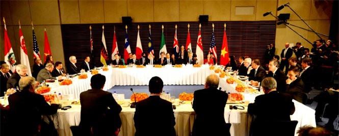 Việt Nam dường như là quốc gia được hưởng lợi nhiều nhất trong Hiệp định đối tác xuyên Thái Bình Dương (TPP), khi ước tính có tới 18.000 thuế quan các loại sẽ được gỡ bỏ.